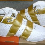 A second look at the 20-5-5 White/Gold PE