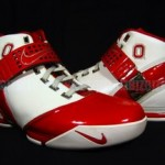 Ohio State University Nike Zoom LeBron V Home PE