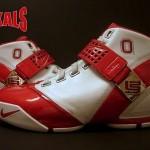 Nike Zoom LeBron V Ohio State University PE