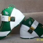 New Nike Zoom LeBron V St. Vincent St. Mary PE