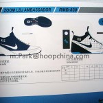 More Information on the Nike Zoom LBJ Ambassador