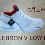 Possible USA Colorway of the Nike Zoom LeBron V Low