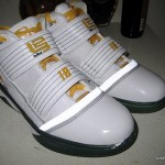 Nike Zoom LeBron Soldier III Sue Bird's Home Player Exclusive