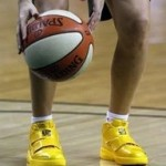 Wearing Brons – Sue Bird's Zoom Soldier III Livestrong PE