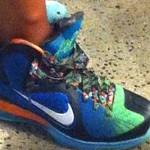 "Nike LeBron 9 ""WHAT THE LEBRON"""