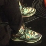 Nike LeBron X PS Elite Reverse Champ Pack Floral PE